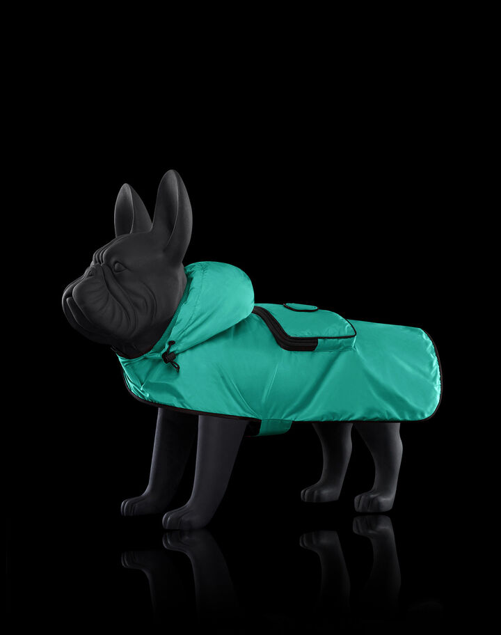 Moncler Mondog packable cape Bright Green